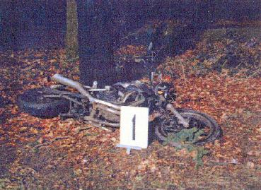 Detail of the burned bike against a tree