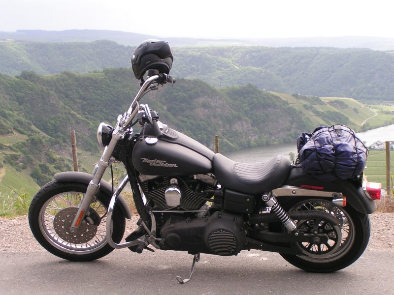 Street Bob in front of the river Mosel (Germany)